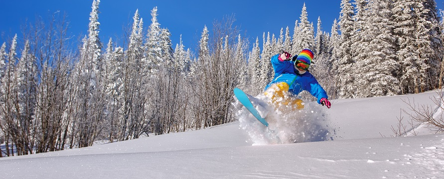 chaqueta snowboard